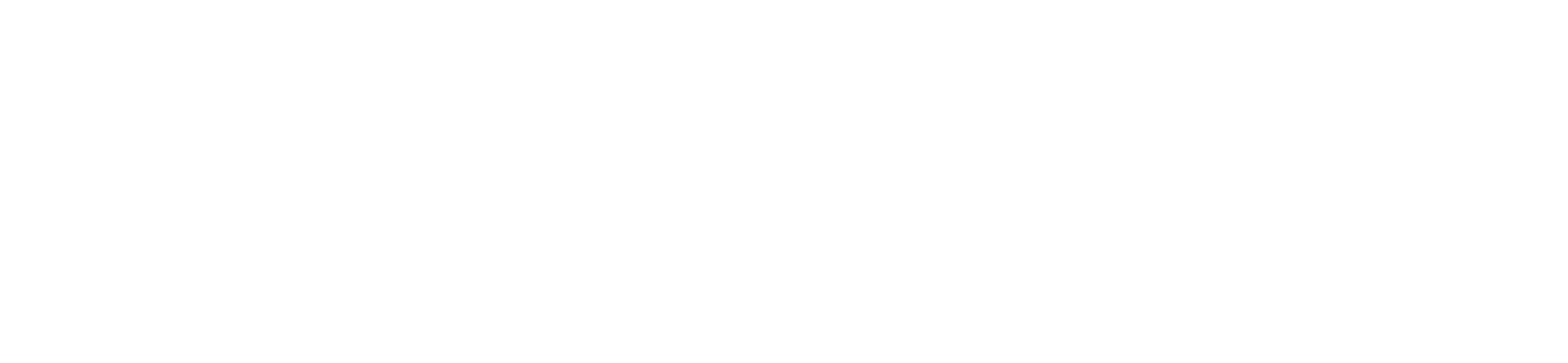 Apex Bit Security